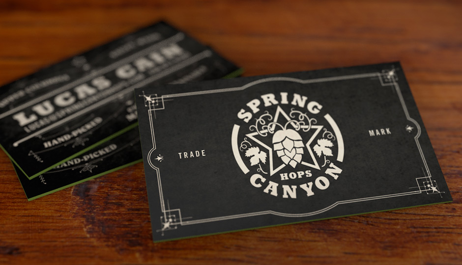 Spring Canyon Farms Logo Design